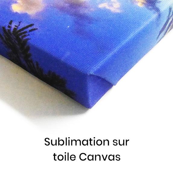 sublimation sur toile canvas