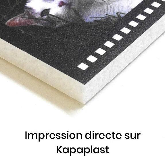 impression directe sur kapaplast